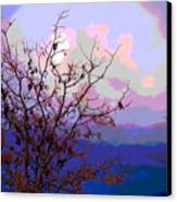 Watermelon Sky Canvas Print by Barbara Schultheis