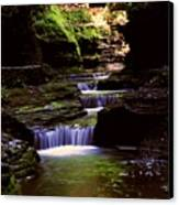 Watkins Glen Gorge In Summer Canvas Print