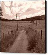 Way To Home Canvas Print
