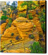 Weathered Rock Canvas Print