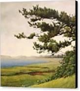 Wellfleet Saltmarsh Canvas Print