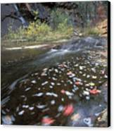 West Fork Oak Creek And Fall Color Canvas Print by Rich Reid