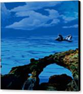 Whales Tales Canvas Print