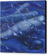 Whales Under The Surface-is That Moby Dick On The Bottom Canvas Print by Tanna Lee M Wells