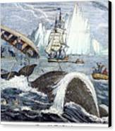 Whaling, 1833 Canvas Print by Granger