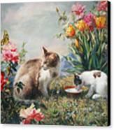 What A Girl Kitten Wants Canvas Print