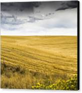 Wheat Fields With Storm Canvas Print by John Trax