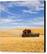 Wheat Harvest Canvas Print by Mike  Dawson