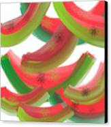 Whimsical Watermelon Canvas Print by Denise Warsalla