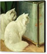 White Cats Watching Goldfish Canvas Print by Arthur Heyer
