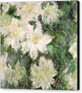 White Clematis Canvas Print by Claude Monet
