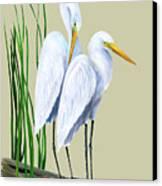 White Egrets And White Lillies Canvas Print