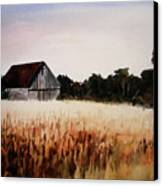 White For Harvest Canvas Print