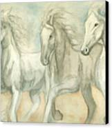 White Horses Canvas Print by Delores Swanson