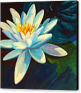 White Lily IIi Canvas Print by Marion Rose