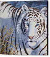 White Tiger - Crystal Eyes Canvas Print by Crista Forest