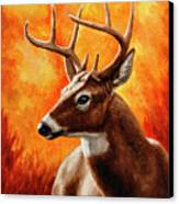 Whitetail Buck Portrait Canvas Print by Crista Forest
