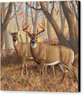 Whitetail Deer Painting - Fall Flame Canvas Print by Crista Forest