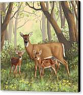 Whitetail Doe And Fawns - Mom's Little Spring Blossoms Canvas Print