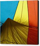 Who Landed This Balloon On Me Canvas Print by Mike  Dawson