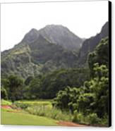 Why Golf Canvas Print