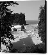 Wild Cove Canvas Print