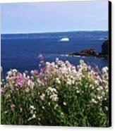 Wild Flowers And Iceberg Canvas Print