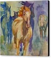 Wild Horses Canvas Print by Gretchen Bjornson
