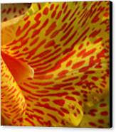 Wild Petals Canvas Print by Jeannie Burleson