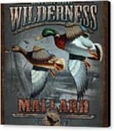 Wilderness Mallard Canvas Print by JQ Licensing