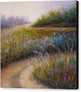 Wildflower Road Canvas Print