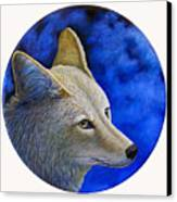 Wiley Coyote Canvas Print by Brian  Commerford