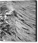 Wind Swept Canvas Print by Brad Scott