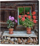 Window And Geraniums Canvas Print by Yair Karelic