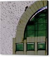 Window Washer Canvas Print