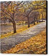 Windswept Walk Canvas Print by Susan Cole Kelly