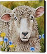 Winnie In The Wild Flowers Canvas Print by Laura Carey
