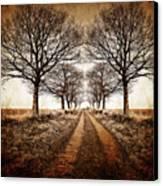 Winter Avenue Canvas Print