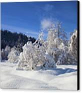 Winter Blanket Canvas Print by Mike  Dawson