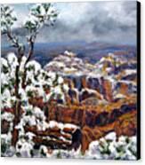 Winter Canyon Canvas Print