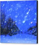 Winter Diamonds Canvas Print by Julie Lueders