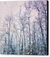 Winter Forest Canvas Print by Priska Wettstein