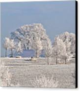 Winter In Canada Canvas Print