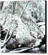 Winter In Shenandoah Canvas Print by Thomas R Fletcher