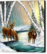 Winter Morning Walk Canvas Print