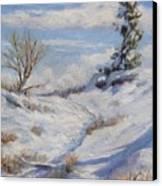 Winter Path Canvas Print by Debra Mickelson
