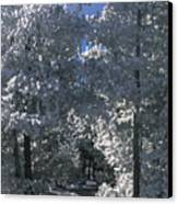 Winter Pathway Canvas Print by Sandra Bronstein