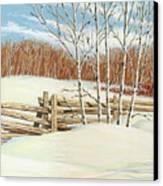 Winter Poplars 2 Canvas Print by Richard De Wolfe