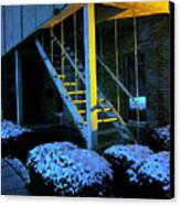 Winter Stairs Canvas Print by Guy Ricketts