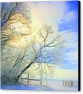 Winters Pretty Presents Canvas Print by Julie Lueders